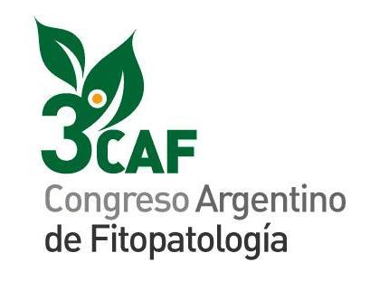 Actas del 3er Congreso de la AAF