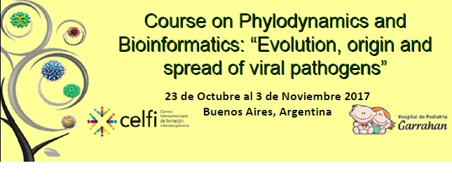 """Course on Phylodynamics and Bioinformatics. """"Evolution, origin and pathogens spread of viral pathogens"""""""