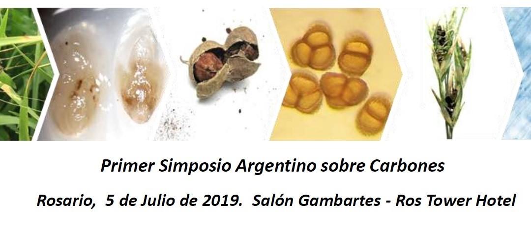 Primer Simposio Argentino sobre carbones-2019